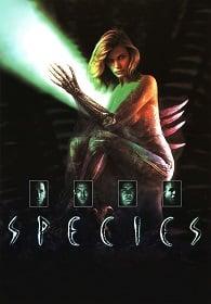 Species 1 (1995) สายพันธุ์มฤตยู…สวยสูบนรก 1