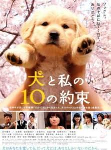 10 Promises to My Dog 10 ข้อสัญญาน้องหมาของฉัน