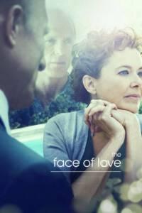 The Face of Love (2013) มหัศจรรย์รัก ปาฏิหาริย์แห่งชีวิต
