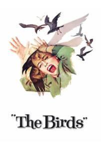The Birds 1963 นก นก นก